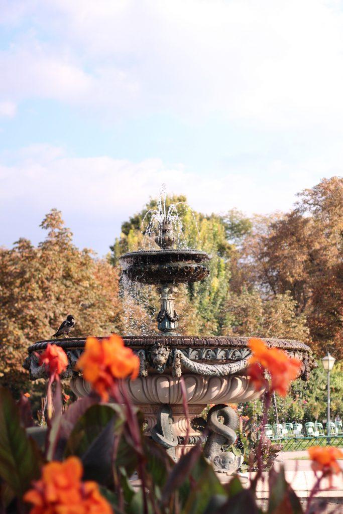 Фонтан в парк във Виена