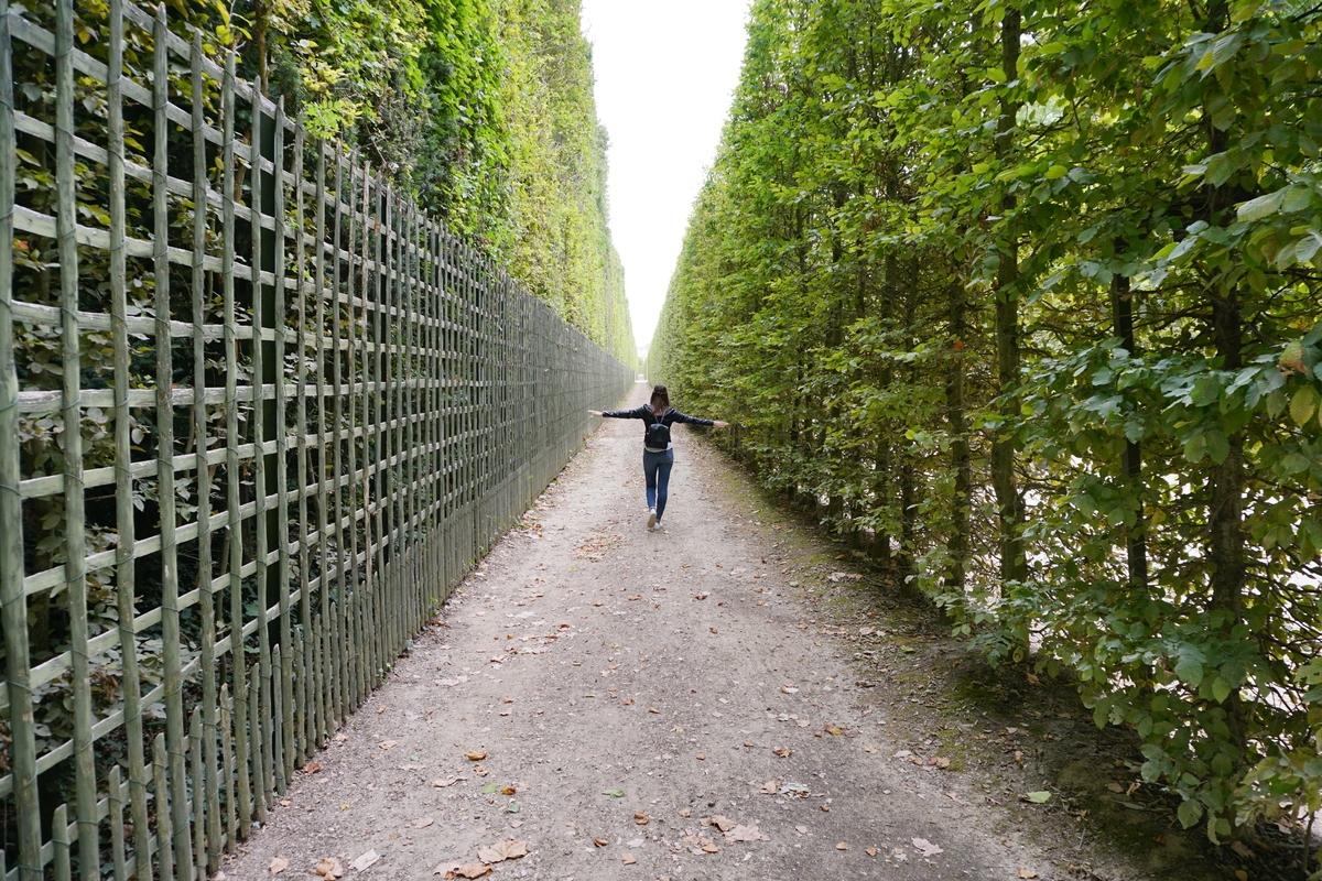 Разходка из градините на Версай