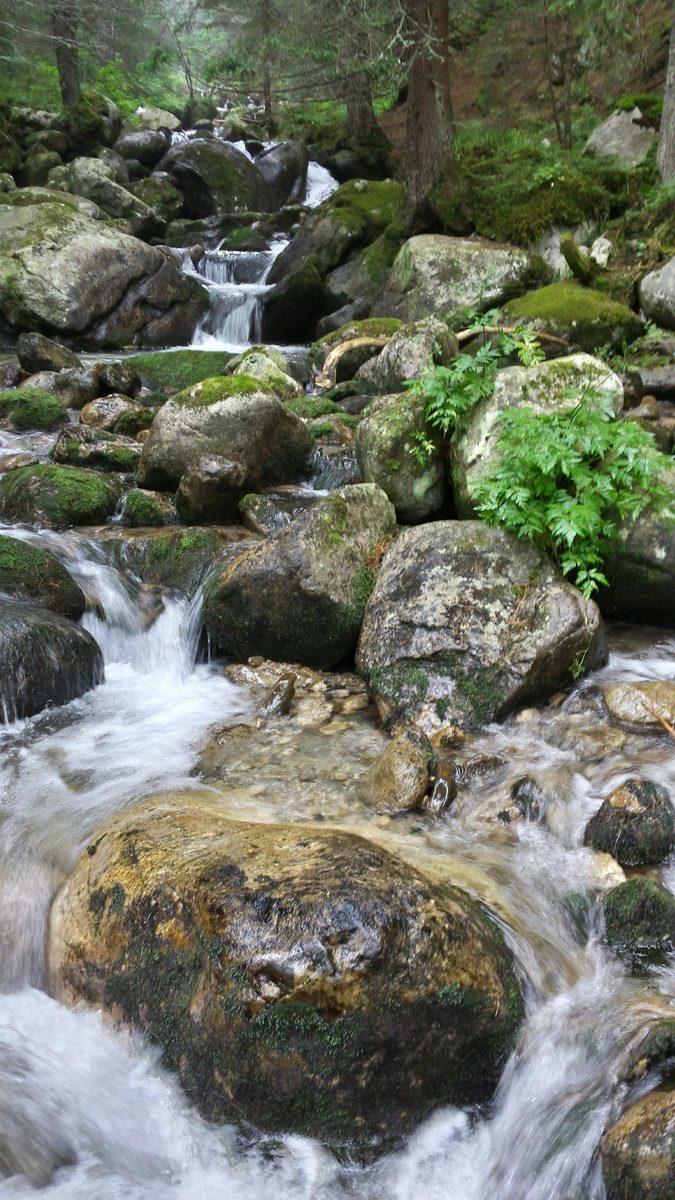 Скокливи водни бързеи из Родопите