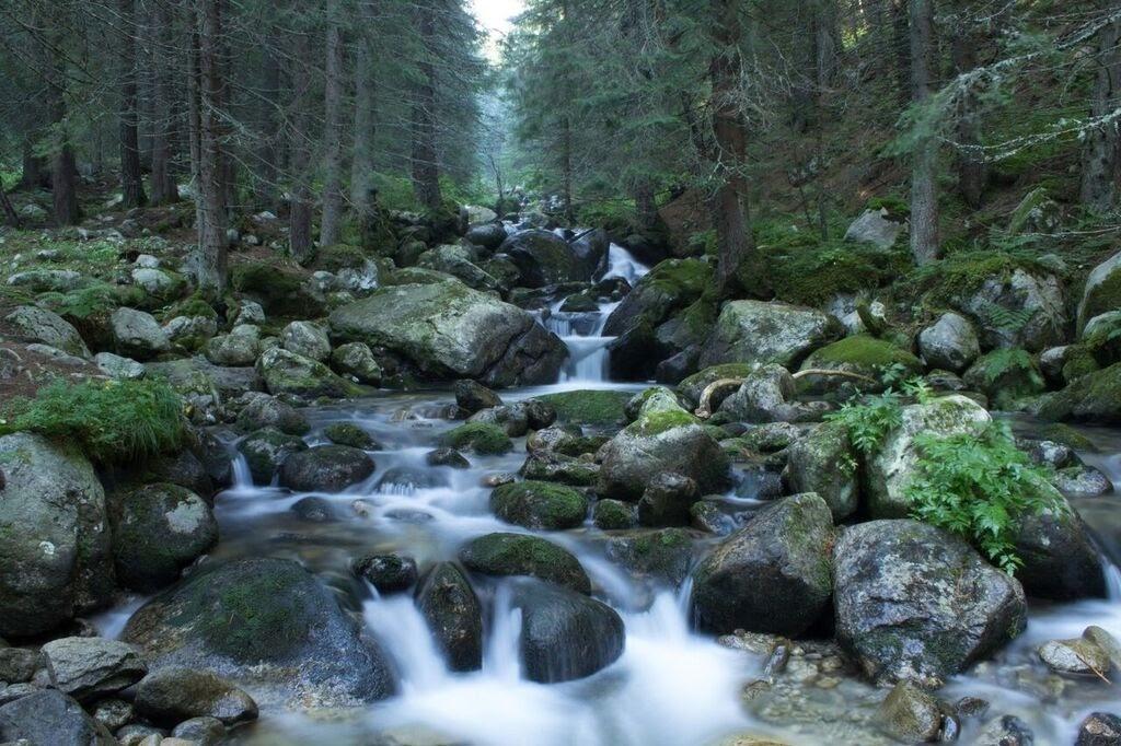 Бързей в планината, Родопите